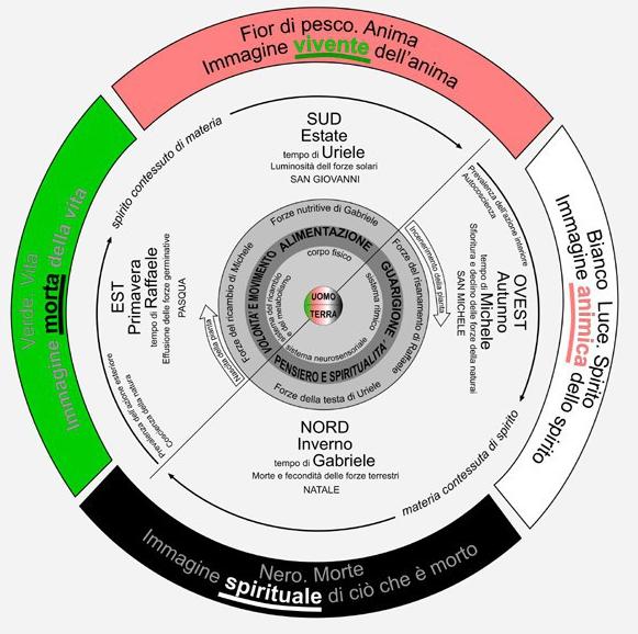 Anna Mattei diagramma 4 stagioni